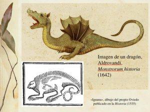 Iguana/dragón